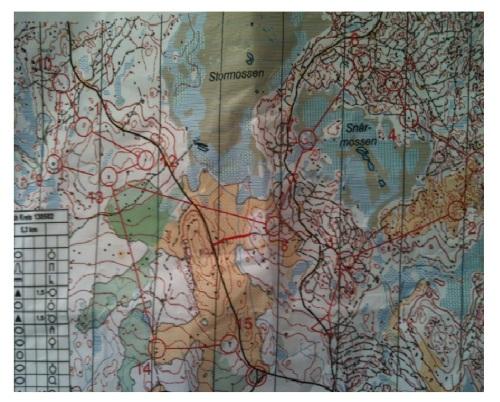 Mapa Marina García Tiomila
